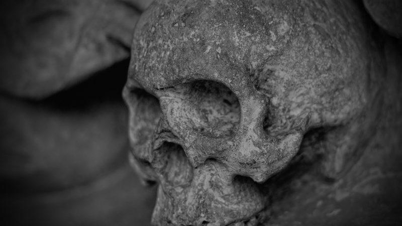 Wie eine Leichenschau machen – ohne Leiche?